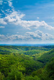 Green hills with blue sky above. Beautiful spring forest on hills with a blue sky above stock photos
