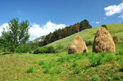 Green hills and countryside meadow Stock Image