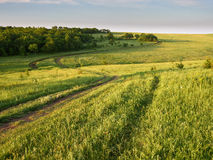 Green hills. And fields of the end of the day Stock Photos