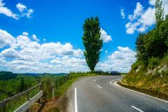 On the road, forgotten world highway, new zealand 12. Green hills, lush grass, blue sky with white clouds. on the road, forgotten world highway, new zealand royalty free stock photography