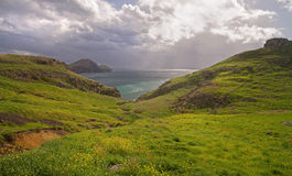 Green hills on Madeira. Green hills on the island of Madeira royalty free stock images