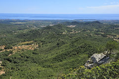 Green hills of Majorca Stock Photography
