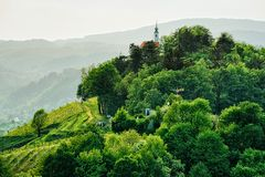 Green hills in Maribor Slovenia. Green hills in Maribor, Lower Styria, Slovenia royalty free stock photos