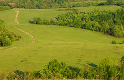 Green hills and meadow with road Stock Image
