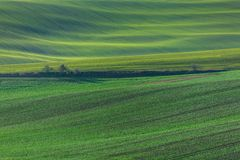Green hills of Moravia. Czech Republic Royalty Free Stock Photo