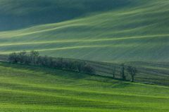 Green hills of Moravia Stock Images