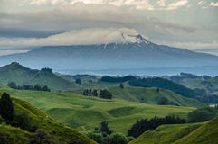 Green Hills and Mount Ruapehu Stock Photo