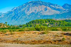 Green Hills of mountains in the background. Royalty Free Stock Photos
