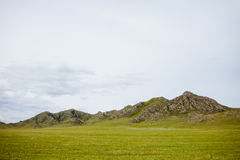 Green hills mountains landscape. Altai, Russia Royalty Free Stock Images