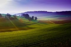 Green hills. Nature landscape background Stock Image