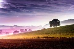 Green hills. Nature landscape background Stock Photos