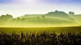 Green hills. Nature landscape background Stock Images