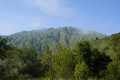 Green hills near Big sur, California Royalty Free Stock Images
