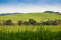 Green hills Royalty Free Stock Image