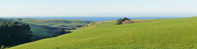 Green hills and ocean Royalty Free Stock Image