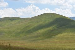 The green hills and the pasture. The Durmitor National Park royalty free stock photos