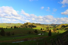 Green hills with river in New Zealand. Green hills with river during sunny day in winter time in New Zealand Royalty Free Stock Photo