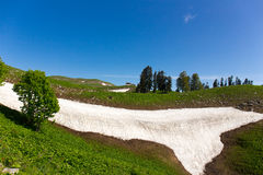Green hills with snow patch summer mount landscape Royalty Free Stock Photos