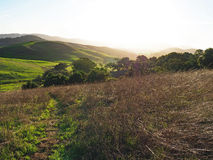 Green Hills of Sonoma County Royalty Free Stock Images