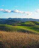 Green Hills of Sonoma County Royalty Free Stock Image
