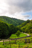 Green Hills, Stepping Stones near River Dove in Peak District Na Royalty Free Stock Images