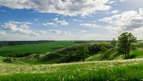 Green hills with trees and grass under the passing clouds. Timelapse stock video footage