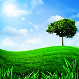 Green hills under the blue sky Royalty Free Stock Photo