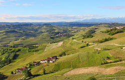 Green hills and vineyards of Piedmont, Italy. Stock Photos