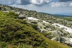 Green hills of Vitosha Mountain near Cherni Vrah Peak, Sofia City Region, Bulgaria. Beautiful green hills of Vitosha Mountain near Cherni Vrah Peak, Sofia City royalty free stock photography