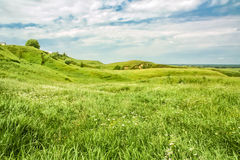 Green hills on a windy summer day Stock Photo