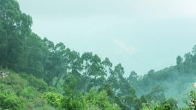 Clouds pass over mountains.Mist rushing over mountain ridge.Panning Shot. Green hillside with trees in cloud scraps.Mist rushing over mountain ridge stock video footage