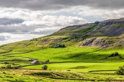 Green hillside of Yorkshire Dales, Ingleton, England Stock Images