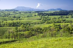 Green hilly area. In front of Aso mountain range in early summer Royalty Free Stock Photography
