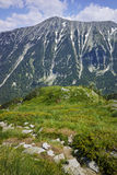 Green hils of Todorka peak, Pirin Mountain Royalty Free Stock Photo