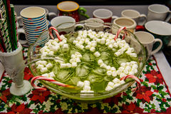 Green Holiday Punch with Marshmallows Stock Image
