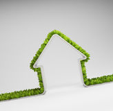 Green home Stock Images