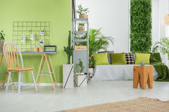 Green Home Interior With Sofa Royalty Free Stock Photo