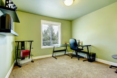 Green home office with beige carpet Royalty Free Stock Photography