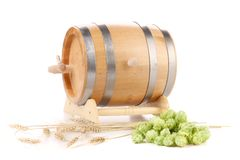 Green hop cones and wooden barrel Royalty Free Stock Images