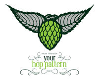 Green hop label. In Royalty Free Stock Images