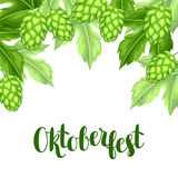 Green hops with leaf. Oktoberfest beer festival. Illustration or card for feast.  Stock Photos