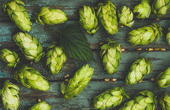 Green hops, malt, on a wooden old table. Green hops, malt, and wheat grain on a wooden old table, ingredients to make beer and bread, agricultural background Royalty Free Stock Photos