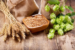 Free Green Hops, Wheat Ears And Grains Stock Photography - 98781832
