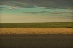 Green horizon Royalty Free Stock Photography