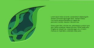 Green horizontal banner with 3d tree leaf cut out from paper. Vector template. For presentations, banners, flyers and your design royalty free illustration