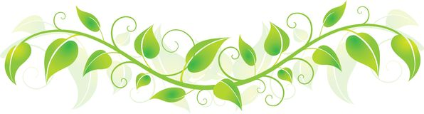 Green Horizontal Leaves Royalty Free Stock Image