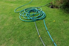 A green hose lying on the grassy ground, A close up image of a garden hose, Rubber tube for watering plants in the garden. High resolution image gallery stock image