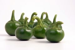 Green hot chili. Peppers in isolated background Royalty Free Stock Image
