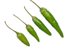 Green hot chili peppers pattern Royalty Free Stock Photography