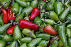 Green hot jalapeno chili peppers close up. Green hot jalapeno and red chili peppers for sale at retail farmers market stall display, close up background pattern Stock Photo